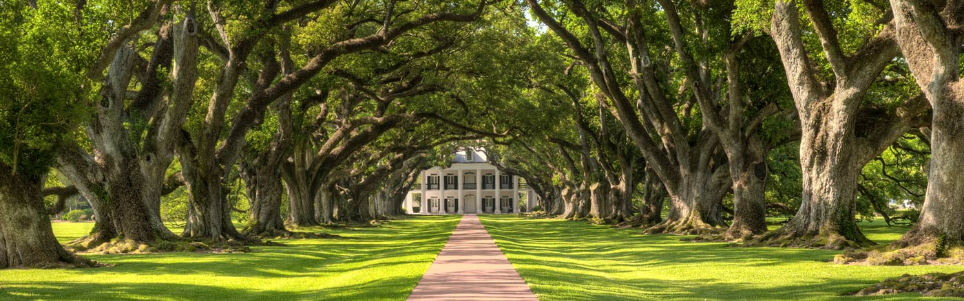 louisiane-oak-plantation