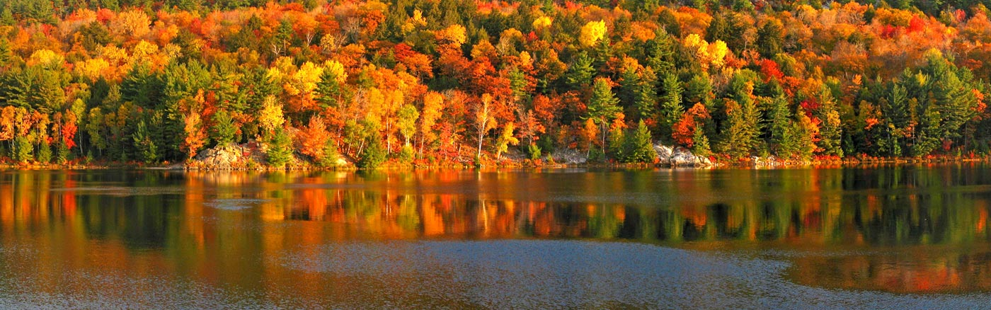 canada-foret-automne